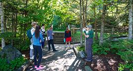 Community Walk & Talk: Rockwood Park